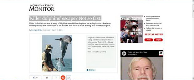 Dolphin Escape