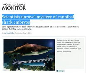 The Monitor_May 1_2013